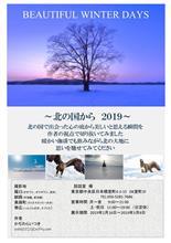2/16~3/8 神田で個展やります