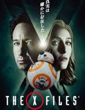 BB-8報知④