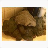 タオル洗い