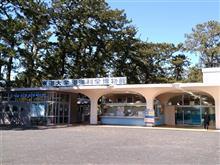 3年ぶりの東海大学海洋科学博物館