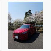 桜を観に 6日