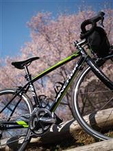 自転車日和!