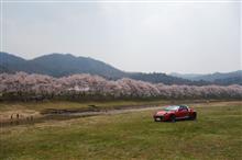 2019しまなみ 海と桜の旅 後編