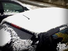 降ったね雪@宮城