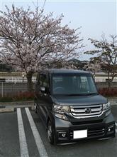 家族旅行  in  鹿児島(1日目)   ※画像多めです