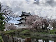 桜満開の松前城~2日目~