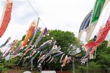 横瀬町こいのぼりまつり(令和元年5月1日)