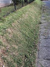 公園の草刈り開始