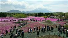 富士山と芝桜・・・