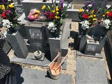 墓参りと今日のランチ。