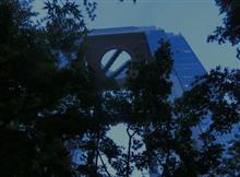 ボタルの鑑賞 @ 梅田スカイビルの麓の「中自然の森」