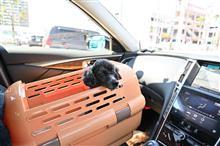 犬とドライブするために作られたペットキャリーケース