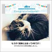 愛車⁉️と出会って4年!