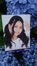 愛車と紫陽花とSKE48・AKB48