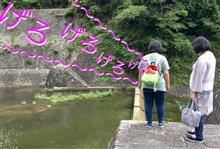 連休最終日 日本最古の石積式マルチプルアーチダム …の巻    令和元年7月6日