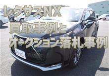 【レクサスNX】買取事例&オークション落札事例