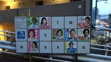 第25回参議院選挙
