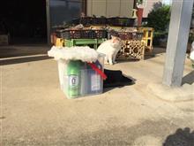 【SurLuster official】屋外駐車でもばっちり撥水!ゼロフィニッシュ