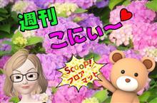 こにぃちゃんのフロアマット紹介コーナー 第19弾(^^)/