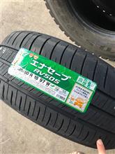 タイヤの結果、ご報告