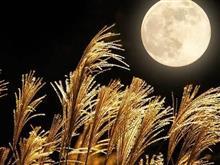 月は出ているか??(;-ω-)ウーン