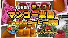 K'sの【マンゴー農園、コーヒー農園の超エコな社会科見学】
