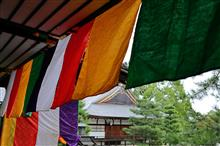 京都・大覚寺に行ってきました♪