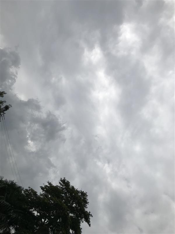 お天気は曇り☁️」真夜中の銀狼のブログ   真夜中の銀狼 - みんカラ