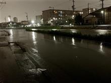 近所の川が氾濫寸前に。