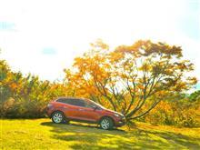 【CX-7】秋晴れの紅葉ドライブ