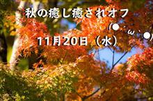 和楽『🍁秋の癒し癒されオフ🍂』(*´▽`*)
