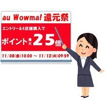 最大1,000円OFFクーポン!冬タイヤを買うならWowma還元祭がオトクです!