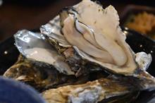 松島で牡蠣づくし