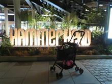 ハッピー、横浜ハンマーヘッドへ行く  #犬 #ハッピー #ミニチュアダックスフント #新港ふ頭 #新港ふ頭客船ターミナル #横浜ハンマーヘッド #ハンマーヘッド #ありあけ #ありあけハーバースタジ