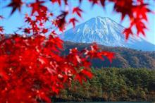 山梨Touring!富士山と紅葉を今年も見れた(富士五湖編)♪