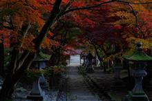 晩秋の静かな朝。