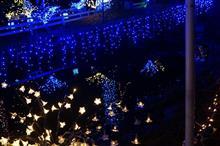宮ケ瀬クリスマスみんなの集いに行ってきました^^