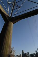 【冬の夕景】大阪・淀川河川敷に撮影に行ってきました♪
