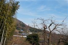 1月2日 初詣に行く前に!^^