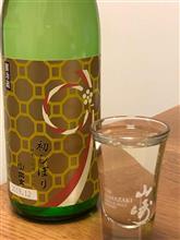 新年のお酒 宗玄 初しぼり 純米生原酒