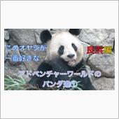 ▼【動画】アドベンチャーワー ...