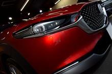マツダのSUVの中核を担う新型CXシリーズ!CX-30のガラスコーティング【リボルト湘南】