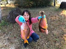 四国磯釣り