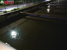 冬なのに、深夜の洪水警報からの、翌日は春のような陽気