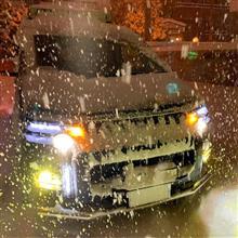 雪やーこんこん♪デリカ納車から2年目らしい(・∀・)…