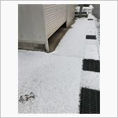 雪が積もりました…