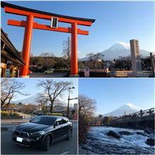東京は開花宣言🌸ですが この辺りの桜は・・・