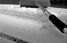 アテンザと遊ぶ 雪に誘われ不要不急の外出へ