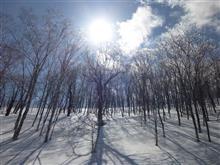 2019-20スキー記録㉒(ルスツリゾート⑰)