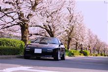 桜ショット2020。